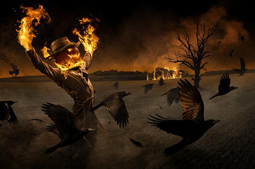 Jack-o'-Scarecrow - gettyimageskorea