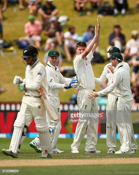 Jackson Bird of Australia celebrates after taking the wicket of Henry Nicholls of New Zealand during day four of the Test match between New Zealand...