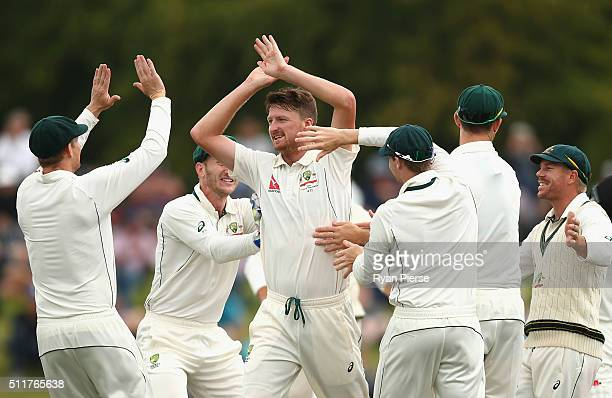 Jackson Bird of Australia celebrates after taking the wicket of Kane Williamson of New Zealand during day four of the Test match between New Zealand...