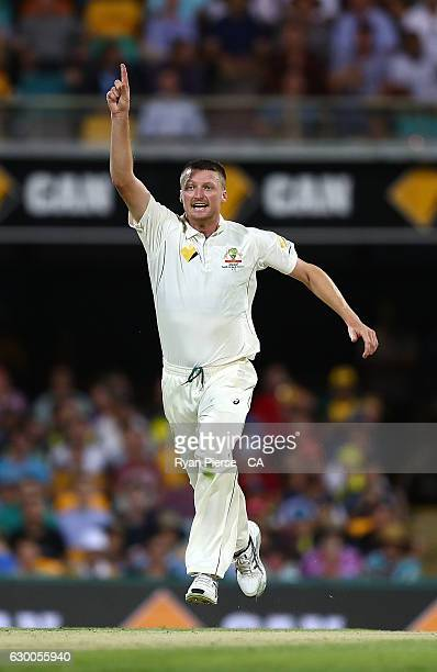 Jackson Bird of Australia celebrates after taking the wicket of Sami Aslam of Pakistan during day two of the First Test match between Australia and...