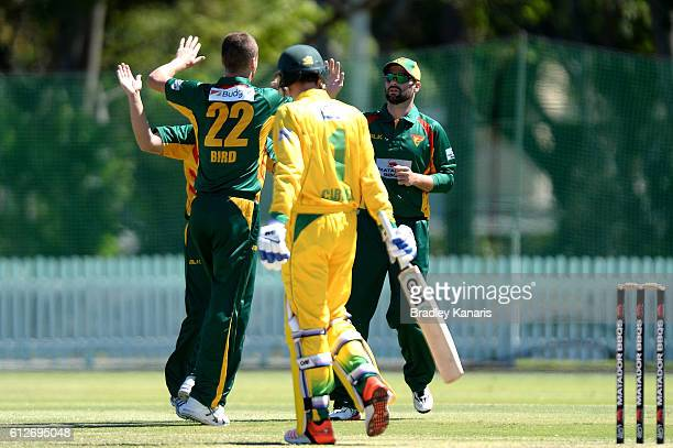 Jackson Bird of Tasmania celebrates after taking the wicket of Jake Carder of the CA XI during the Matador BBQs One Day Cup match between Tasmania...