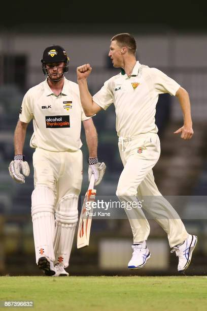Jackson Bird of the Tigers celebrates the wicket of Ashton Turner of Western Australia during day three of the Sheffield Shield match between Western...