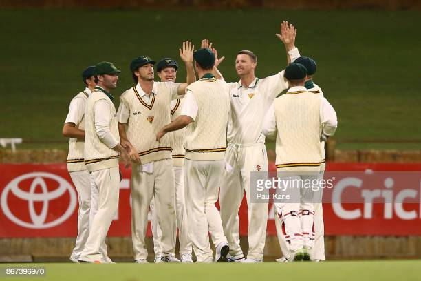 Jackson Bird of the Tigers celebrates the wicket of Josh Inglis of Western Australia during day three of the Sheffield Shield match between Western...