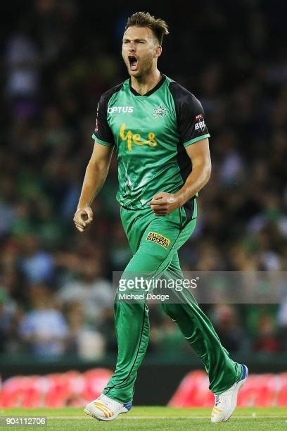 Jackson Coleman of the Stars celebrates the wicket of Marcus Harris of the Renegades during the Big Bash League match between the Melbourne Renegades...
