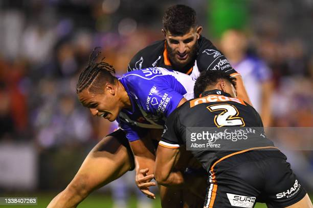 Jackson Topine of the Bulldogs is tackled during the round 25 NRL match between the Wests Tigers and the Canterbury Bulldogs at Moreton Daily...