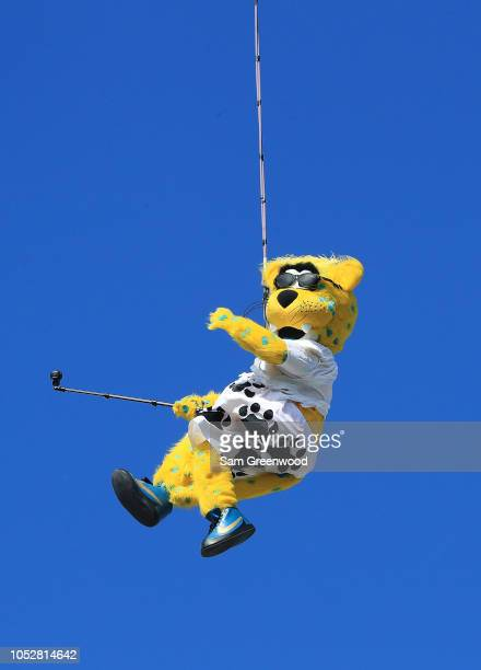 Jacksonville Jaguars mascot Jaxson de Ville performs during the game against the Houston Texans at TIAA Bank Field on October 21 2018 in Jacksonville...
