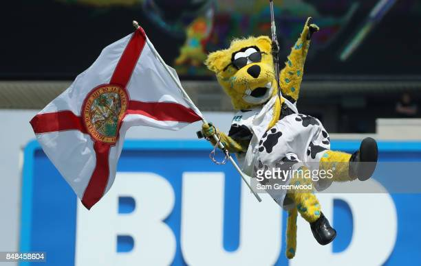 Jacksonville Jaguars mascot Jaxson de Ville takes the field with a Florida state flag prior to the start of a game against the Tennessee Titans at...