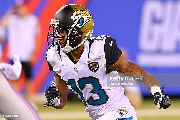 Jacksonville Jaguars wide receiver Rashad Greene during the second quarter of the game between the New York Giants and the Jacksonville Jaguars...