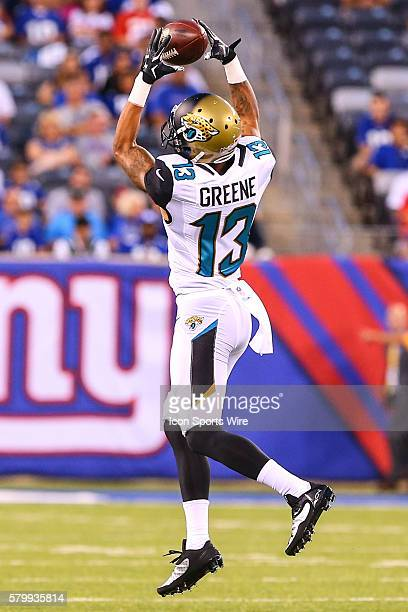 Jacksonville Jaguars wide receiver Rashad Greene makes a catch during the first quarter of the game between the New York Giants and the Jacksonville...