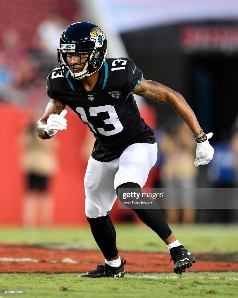 NFL: AUG 30 Preseason - Jaguars at Buccaneers : Foto jornalística