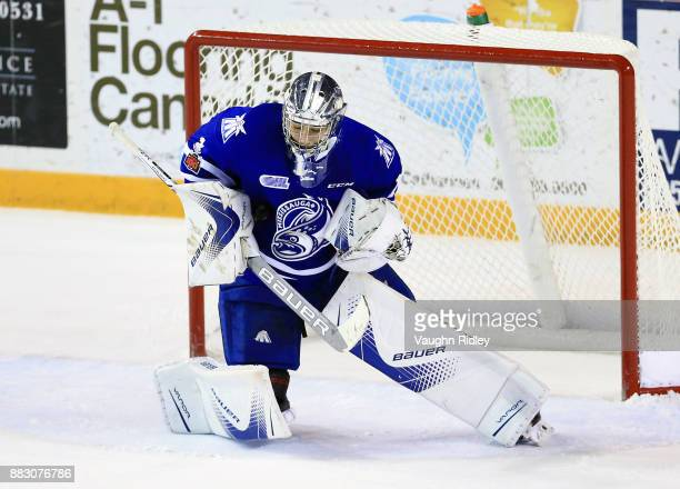 Jacob Ingham of the Mississauga Steelheads makes a save during an OHL game against the Niagara IceDogs at the Meridian Centre on November 25 2017 in...