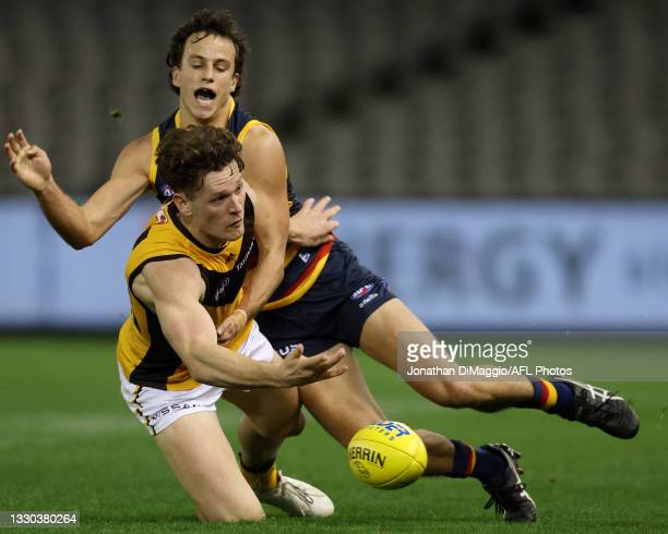 Jacob Koschitzke of the Hawks and Will Hamill of the Crows contest for the ball during the round 20 AFL match between Adelaide Crows and Hawthorn...