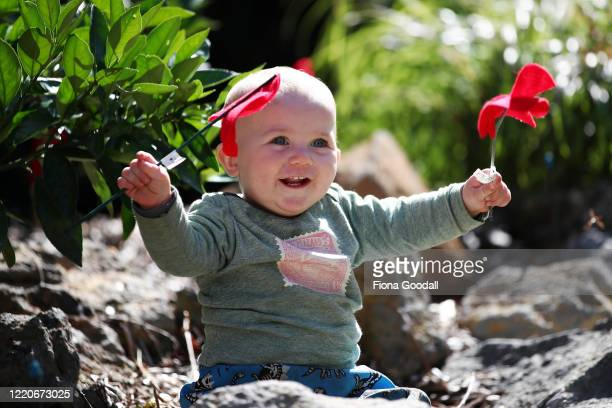 Jacob Turner 10 months helps create an Anzac tribute in the neighbors garden in Titirangi on April 24 2020 in Auckland New Zealand New Zealanders are...