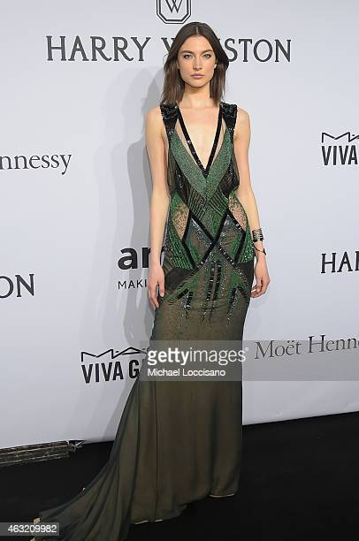 Jacquelyn Jablonski attends the 2015 amfAR New York Gala at Cipriani Wall Street on February 11 2015 in New York City