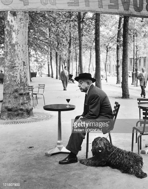 Jacques Prevert French Poet And His Dog At The Bistro On Quay SaintBernard Paris 5Th District