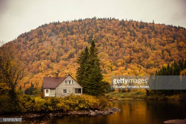 jacques-cartier national park - log cabin stock pictures, royalty-free photos & images