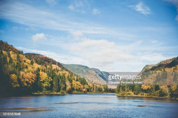 jacques-cartier national park - shores of the lake - lakeshore stock pictures, royalty-free photos & images