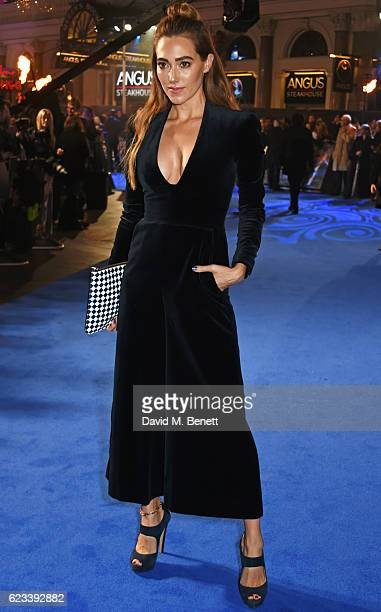 Jacqui Ainsley attends the European Premiere of 'Fantastic Beasts And Where To Find Them' at Odeon Leicester Square on November 15 2016 in London...