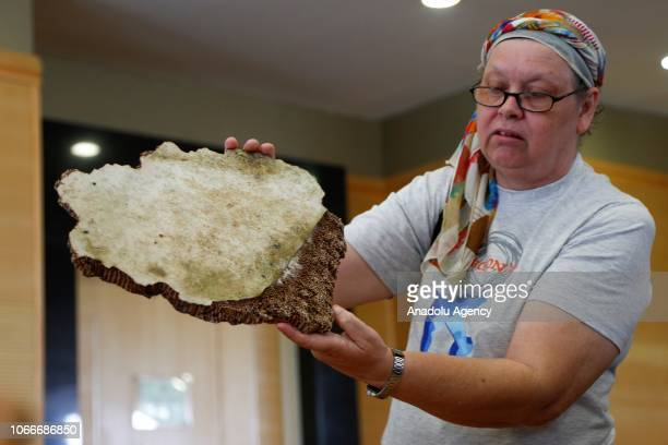 Jacquita Gonzales the wife of Malaysia Airlines flight MH370 steward Patrick Gomes shows pieces of debris found in Madagascar believed to be from...