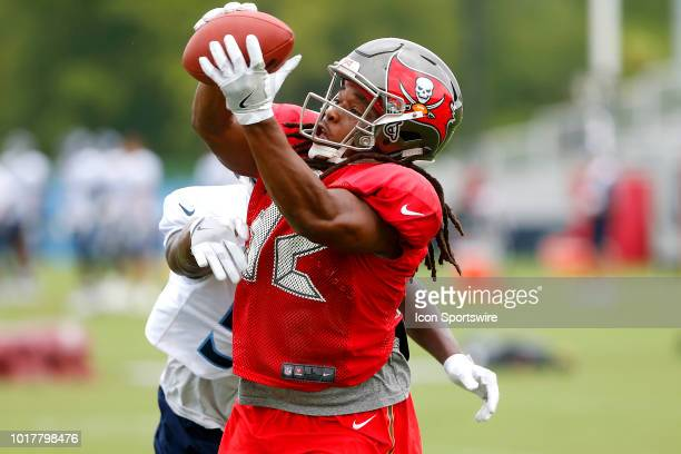 Jacquizz Rodgers of the Bucs catches a pass during the joint training camp work out between the Tampa Bay Buccaneers and the Tennessee Titans on...