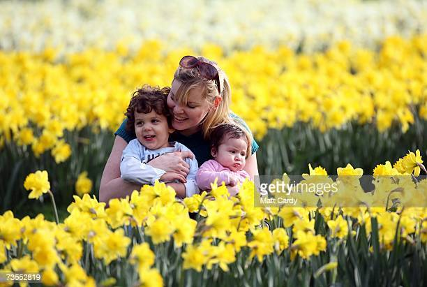 Jade Whilde shows the daffodils to her children Jacob and Jemima 4 months along The Avenue in Greenwich Park on March 12 2007 in London England