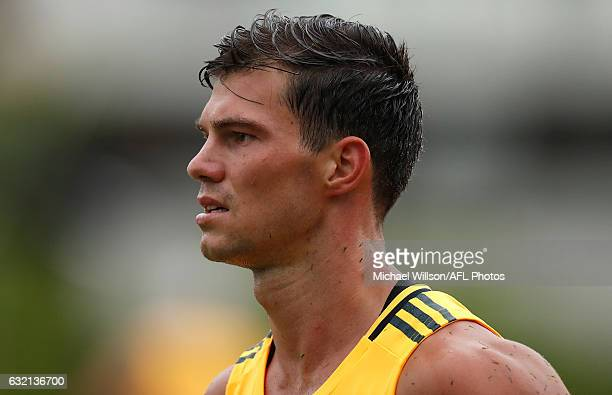 Jaeger O'Meara of the Hawks looks on during a Hawthorn Hawks AFL press conference and training session at Waverley Park on January 20 2017 in...