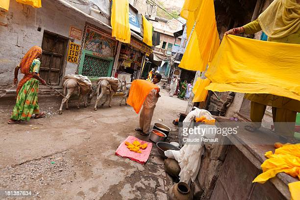 CONTENT] Jaffa Reilly dyeing cloth in a street of Jodhpur