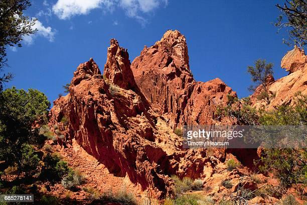jagged aztec sandstone formations with trees - timothy hearsum fotografías e imágenes de stock