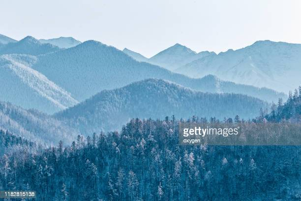jagged blue silhouettes mountain range, siberia, altai, russia - extreme terrain stock pictures, royalty-free photos & images