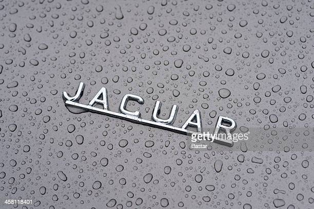 jaguar e-type - jaguar e type stock photos and pictures