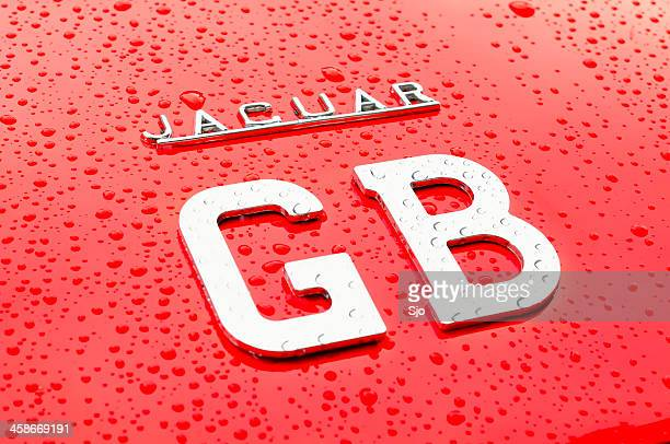jaguar gb - jaguar e type stock photos and pictures