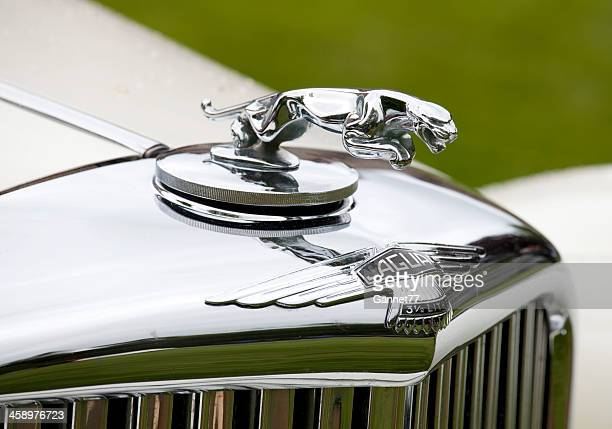 jaguar ornament on the hood of a vintage car - hood ornament stock pictures, royalty-free photos & images
