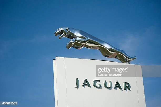 jaguar ao ar livre de sinal - jaguar car imagens e fotografias de stock