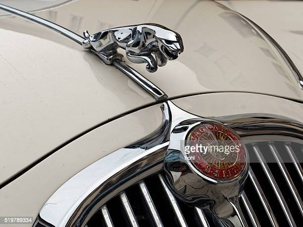 jaguar vintage classic car symbol - hood ornament stock pictures, royalty-free photos & images