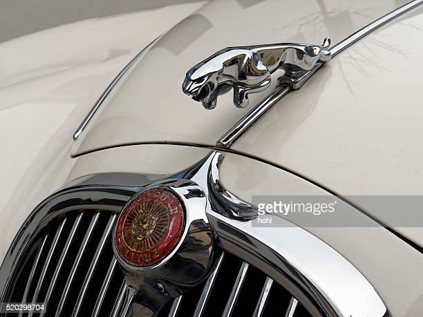 jaguar vintage classic car symbol - jaguar car stock pictures, royalty-free photos & images