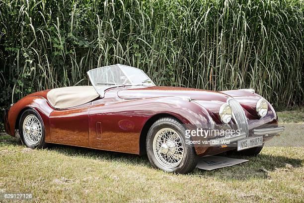 """jaguar xk120 roadster classic british sports car - """"sjoerd van der wal"""" photos et images de collection"""