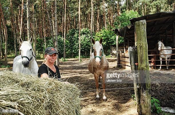 Jahrhundertflut Flutopfer Ueberschwemmung Wasser in Brandenburg Rathenow Reiterhof DD Ranch Martina Deichsel hat Pferde aufgenommen Tier Rettung