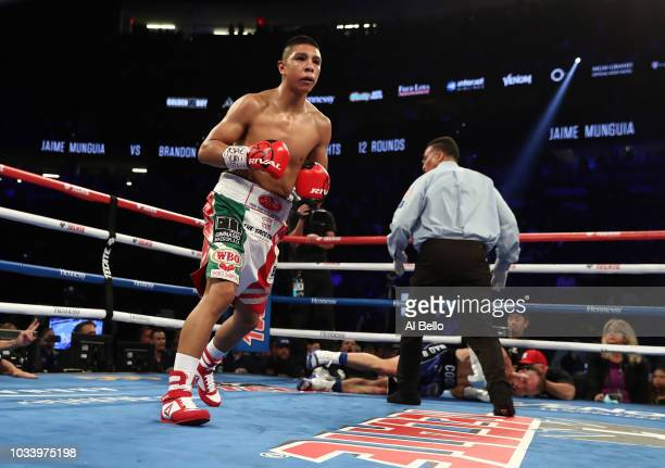 Jaime Munguia knocks down Brandon Cook in the third round during their WBO junior middleweight title fight at TMobile Arena on September 15 2018 in...
