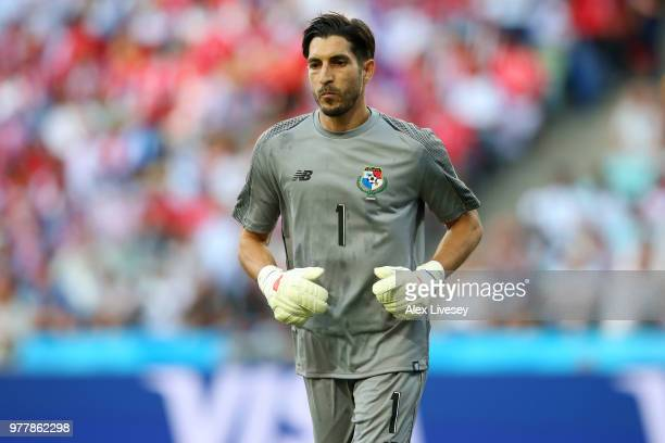 Jaime Penedo looks on during the 2018 FIFA World Cup Russia group G match between Belgium and Panama at Fisht Stadium on June 18 2018 in Sochi Russia