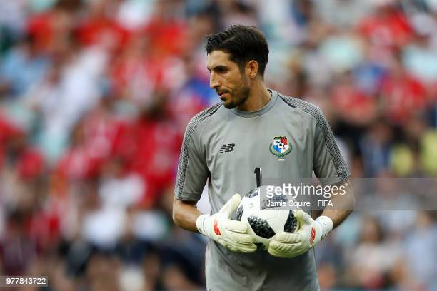Jaime Penedo of Panama looks on during the 2018 FIFA World Cup Russia group G match between Belgium and Panama at Fisht Stadium on June 18 2018 in...