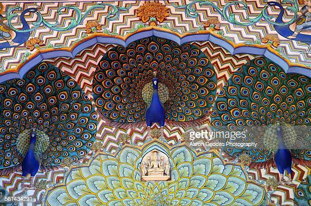 jaipur city palace peacocks - mughal empire stock photos and pictures