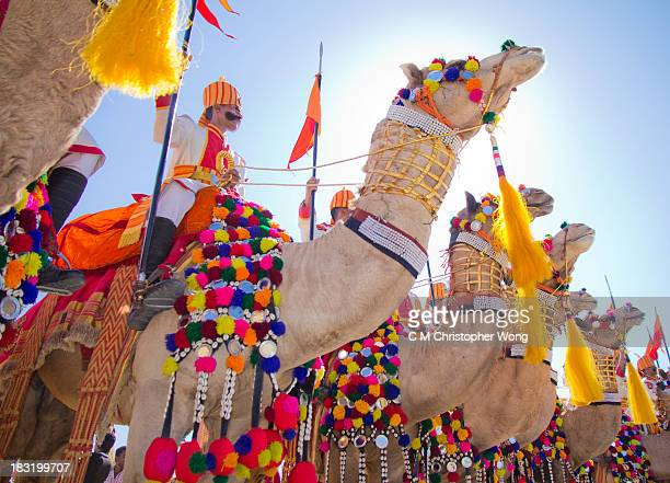 CONTENT] Jaisalmer Desert Festival parade of decorated camels