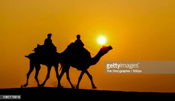 jaisalmer, india - the storygrapher stock pictures, royalty-free photos & images