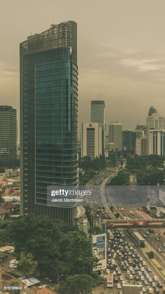 Jakarta Jungle : Stock Photo