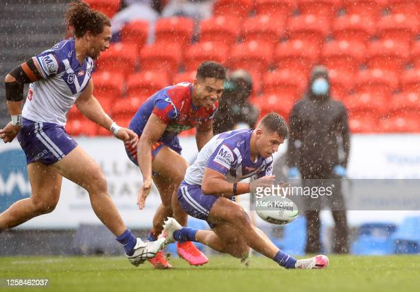 Jake Averillo of the Bulldogs loses control of the ball during the round 11 NRL match between the Newcastle Knights and the Canterbury Bulldogs at...