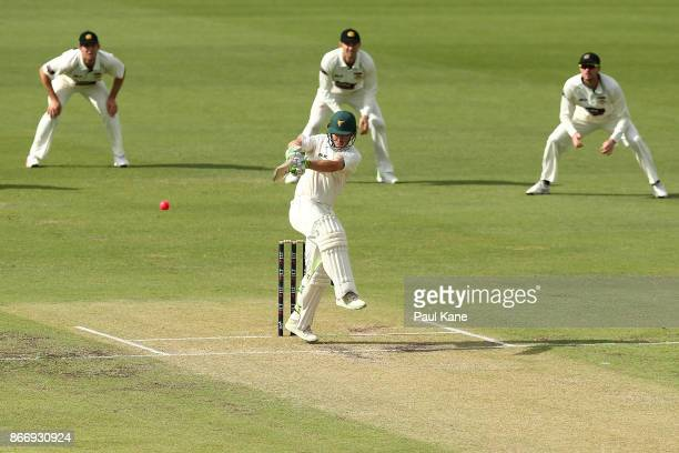 Jake Doran of the Tigers bats during day two of the Sheffield Shield match between Western Australia and Tasmania at the WACA on October 27 2017 in...