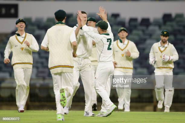 Jake Doran of the Tigers celebrates after taking a catch to dismiss Marcus Stoinis of the Warriors off the bowling of Jackson Bird of the Tigers...
