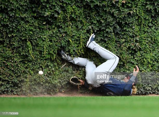 Jake Fraley of the Seattle Mariners falls in the ivy attempting to make a catch in the third inning against the Chicago Cubs at Wrigley Field on...