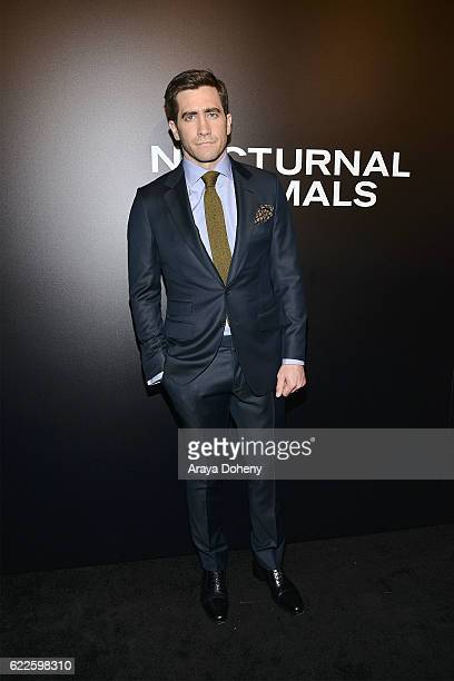 Jake Gyllenhaal attends the screening of Focus Features' Nocturnal Animals at Hammer Museum on November 11 2016 in Westwood California
