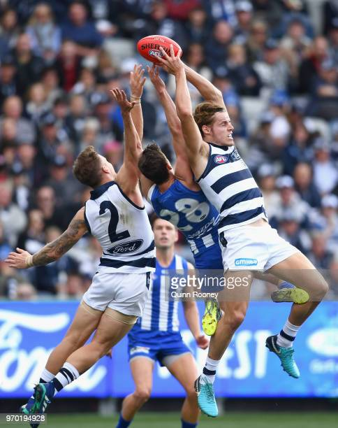 Jake Kolodjashnij of the Cats marks during the round 12 AFL match between the Geelong Cats and the North Melbourne Kangaroos at GMHBA Stadium on June...